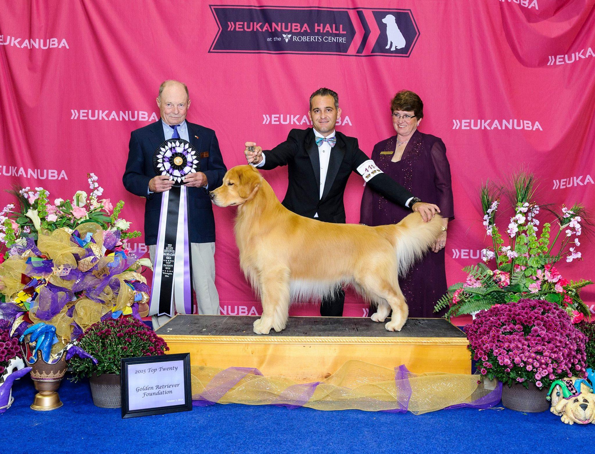 SW Florida Professional Dog Trainers